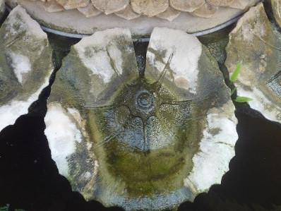 foto fontein
